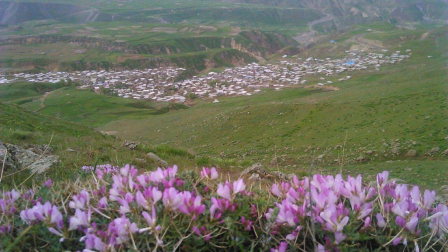 روستای موییل